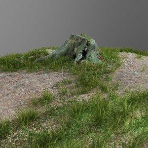 scanned tree stump gras 3D model