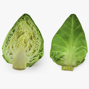 sweetheart cabbage half 3D model