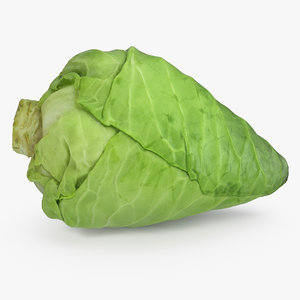 3D sweetheart cabbage