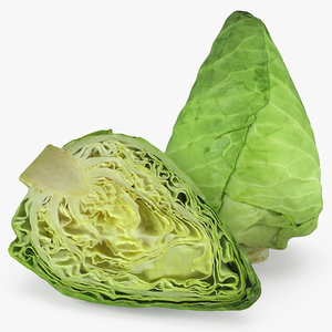 sweetheart cabbage 3D