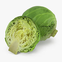 3D cabbage realistic