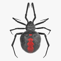 black widow spider rigged 3D model