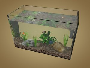 fishes aquarium 3D model