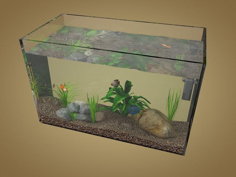 fishes aquarium 3D model