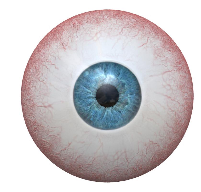 3D photorealistic human eye colors model