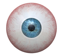 3D photorealistic human eye colors model