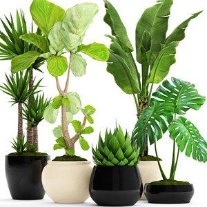 3D plants