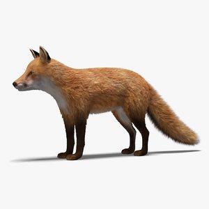 fox fur model