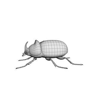 3D rhinoceros beetle model