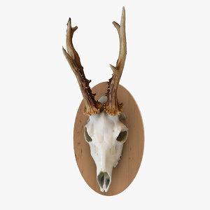 3D scan deer skull model