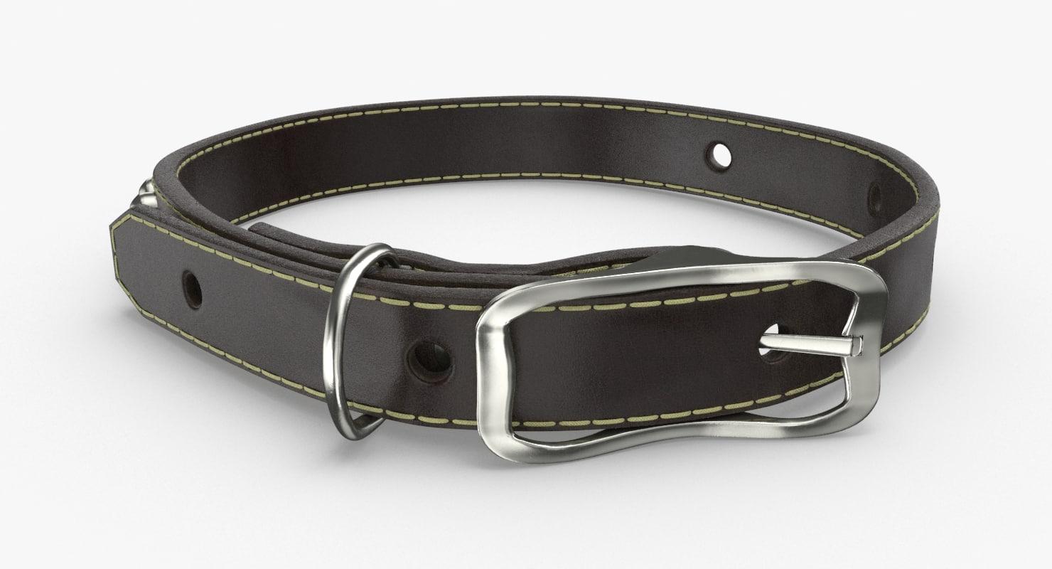 dog-collar-01 model