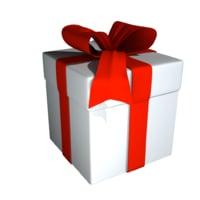 gift model
