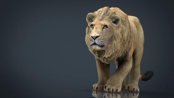 3D hd realistic lion