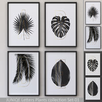 JUNIQE Letters Plants Framed Set-01