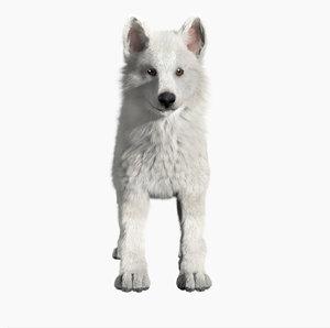 3D model wolf baby
