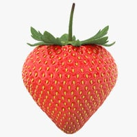 realistic strawberry model
