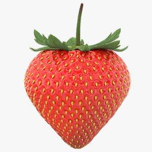 realistic strawberry model