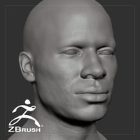 3D average black male head