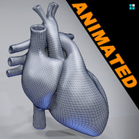 heart pro human animation 3D