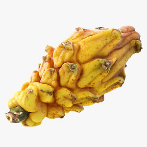 3D yellow dragonfruit model