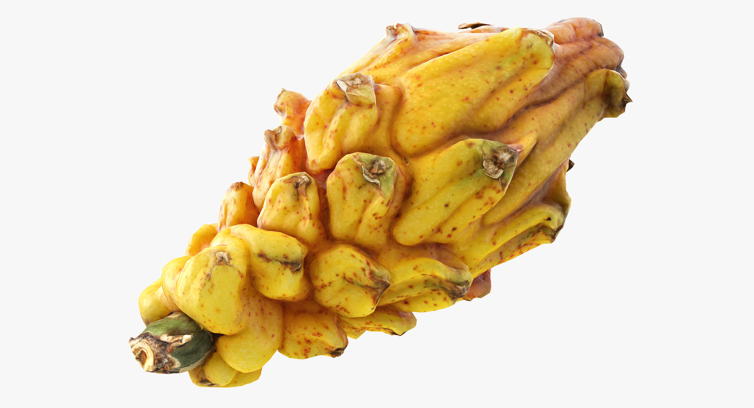 3D yellow dragonfruit model