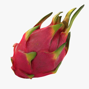 red dragon fruit 3D model