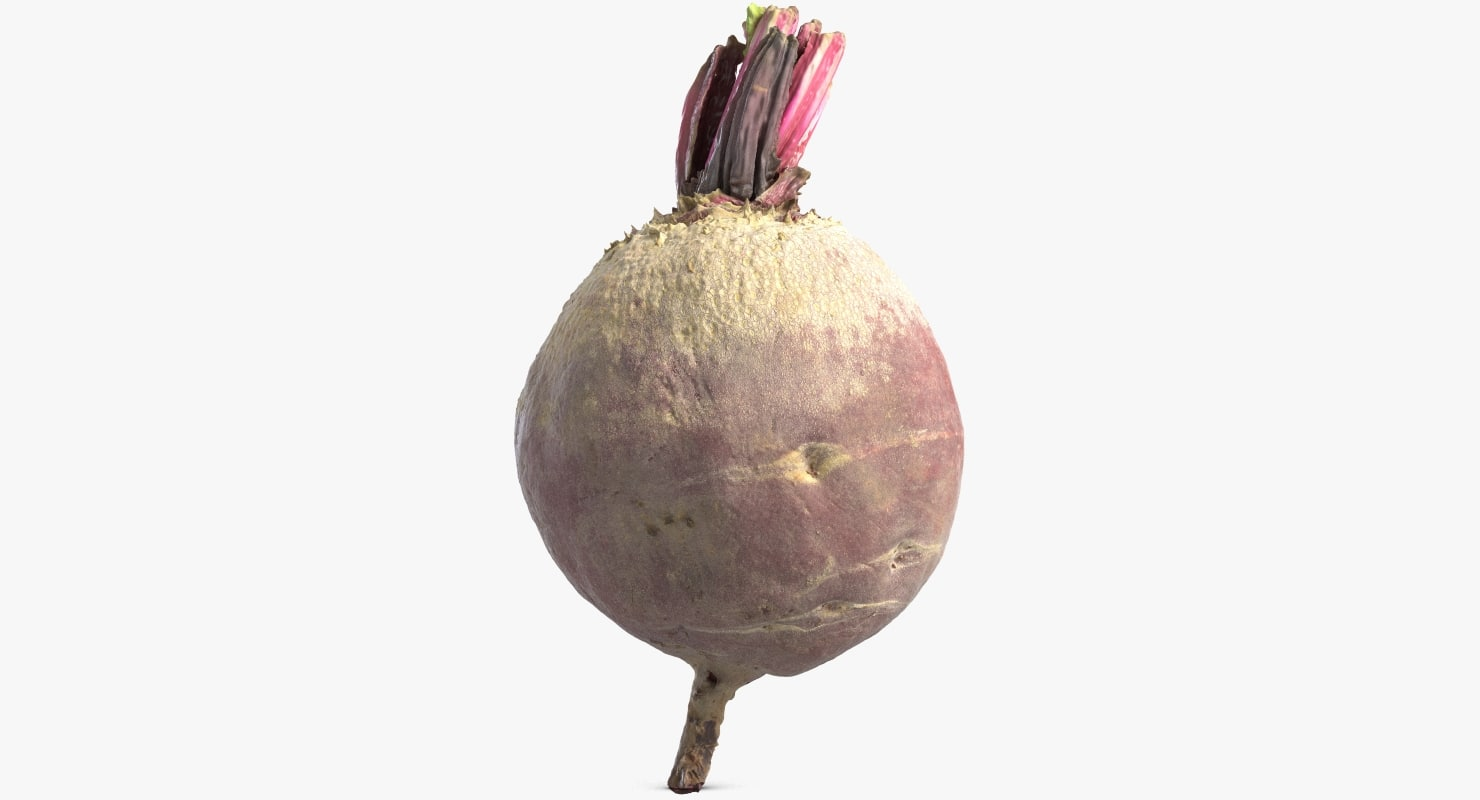 3D model beetroot beet root