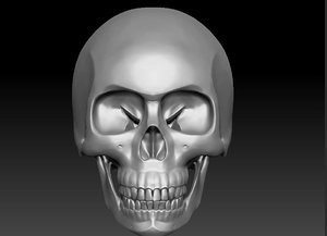 skull3d decimation 3D model