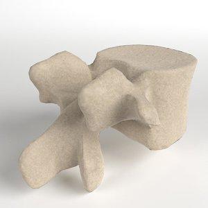 human lumbar vertebra 3D model