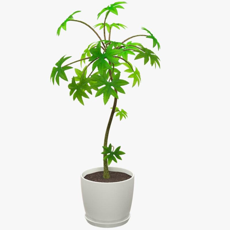 3D small tree white pot