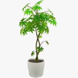 3D tree white pot