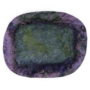 rock sea seaweed 3D model