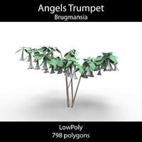 angel trumpet 3D
