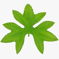 tree leaf model