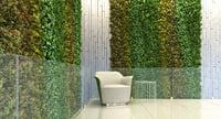plant epipremnum aureum 3D model
