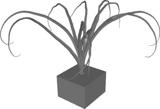 old tree 3D model