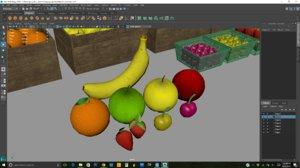 fruit model