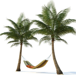 3D hammock palm trees