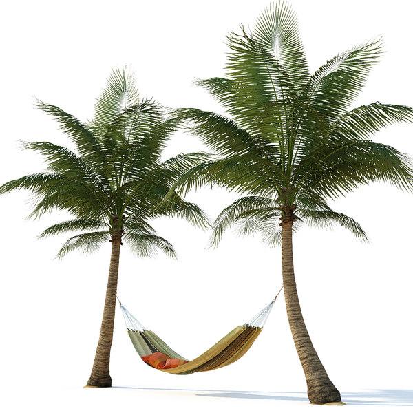 3D hammock palm trees