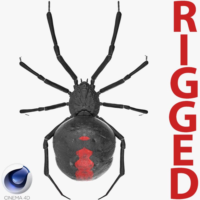 3D black widow spider rigged