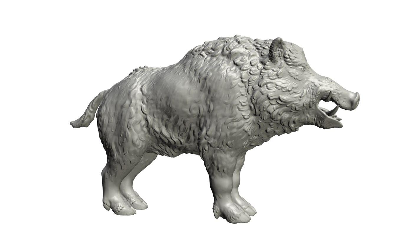 3D model boar