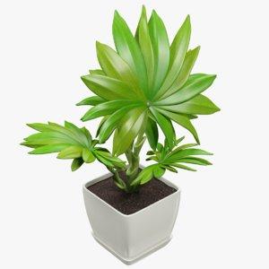 3D small palm pot