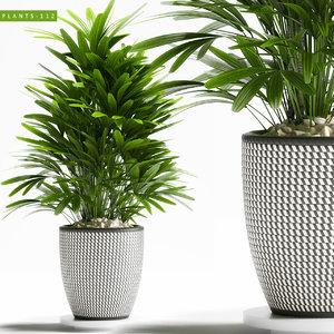 3D plants 112