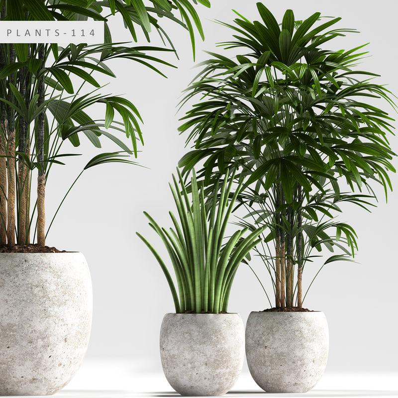 3D plants 114