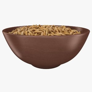 realistic brown rice bowl 3D
