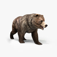 Grizzly Bear Low poly