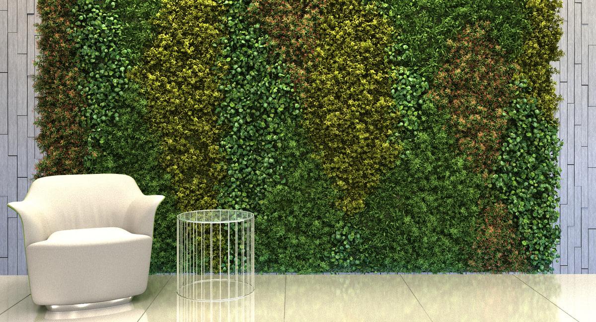 3D model plant epipremnum aureum