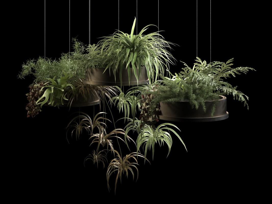 hanging pots plants 2 3D