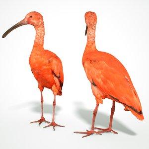 3D animal scanned unity model