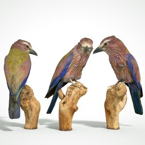 3D model animal scanned unity